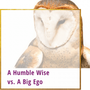 A Humble Wise Vs. A Big Ego