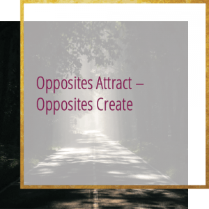 forest path - Opposites attract - opposites create