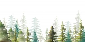 trees in watercolour
