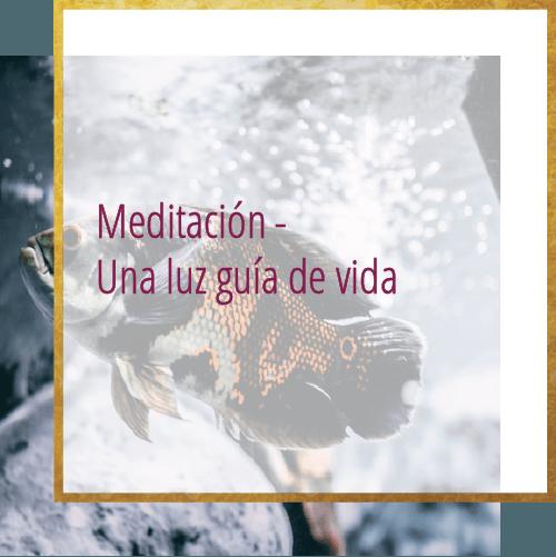 Meditación - Una luz guía de vida