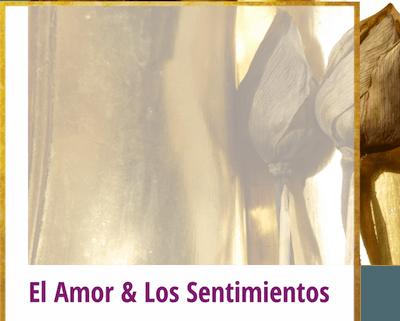 el amor y los sentimientos