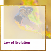 law of evolution