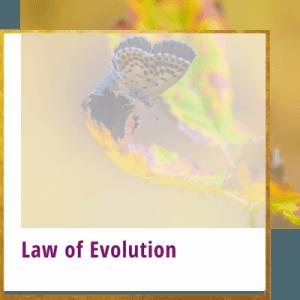 law of evolution